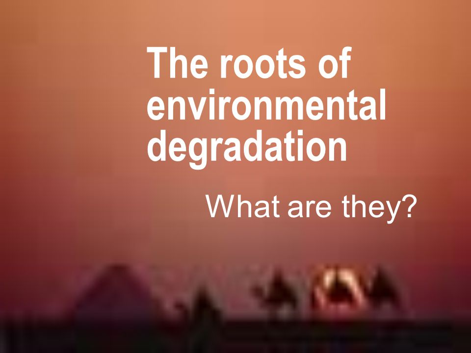 The roots of environmental degradation What are they?