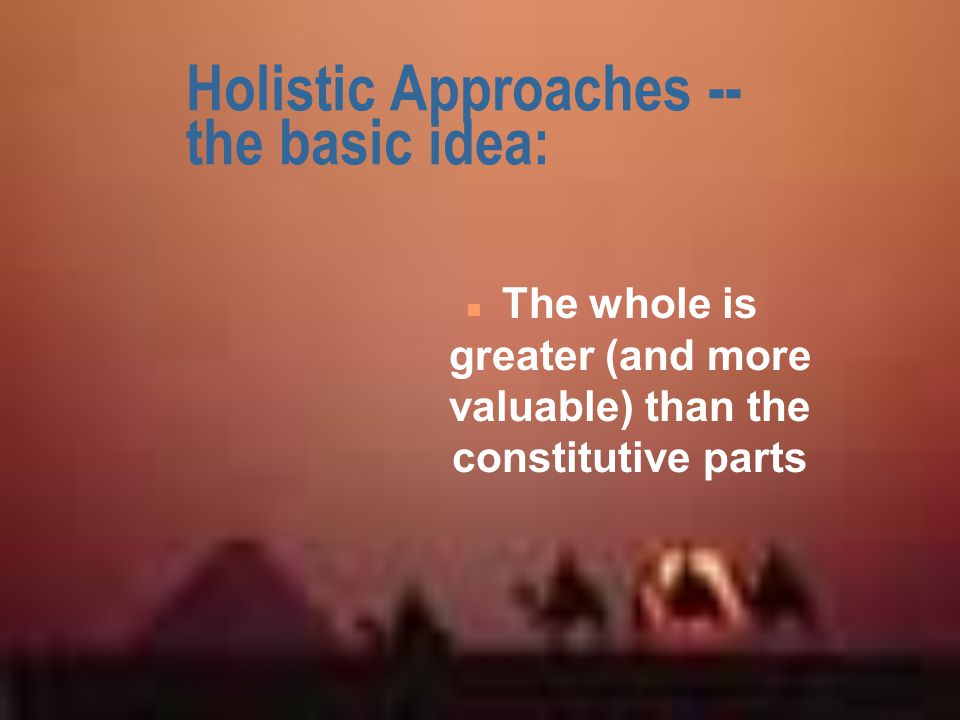 Holistic Approaches -- the basic idea: n The whole is greater (and more valuable) than the constitutive parts