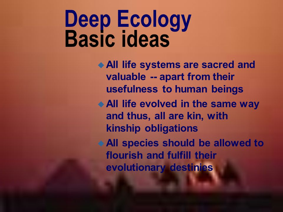 Deep Ecology Basic ideas u All life systems are sacred and valuable -- apart from their usefulness to human beings u All life evolved in the same way