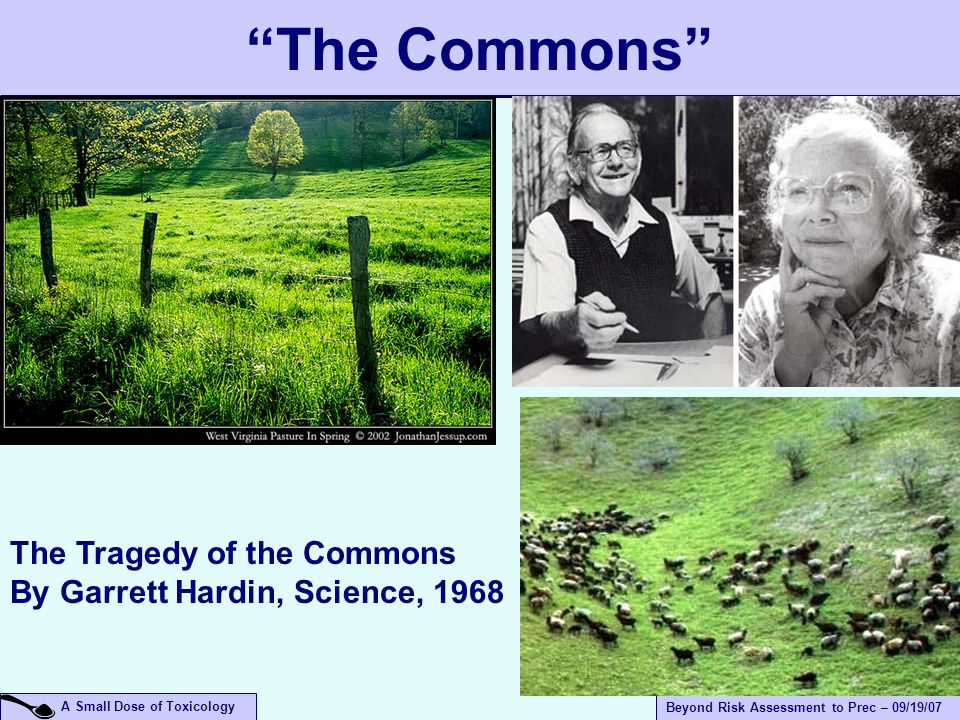 A Small Dose of Toxicology Beyond Risk Assessment to Prec – 09/19/07 The Commons The Tragedy of the Commons By Garrett Hardin, Science, 1968