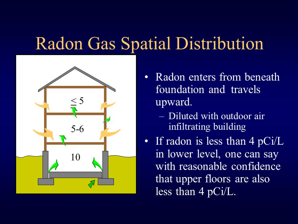 What Happens When Radon Decay Products Are Inhaled.