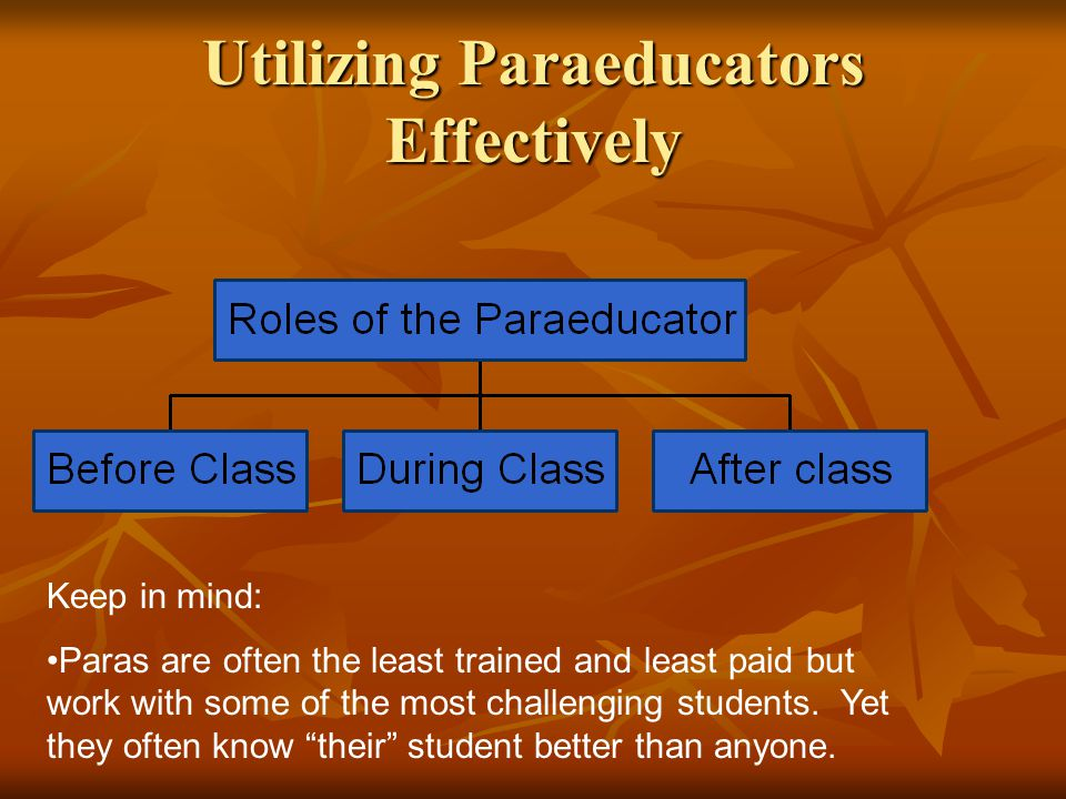Utilizing Paraeducators Effectively Keep in mind: Paras are often the least trained and least paid but work with some of the most challenging students