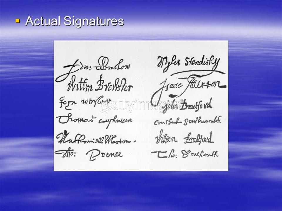  Actual Signatures