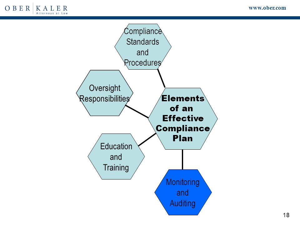 www.ober.com 18 Elements of an Effective Compliance Plan Compliance Standards and Procedures Monitoring and Auditing Education and Training Oversight Responsibilities