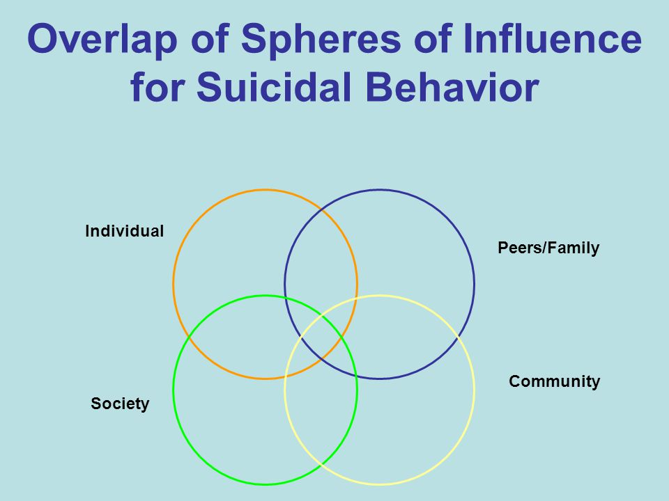Overlap of Spheres of Influence for Suicidal Behavior Individual Peers/Family Community Society
