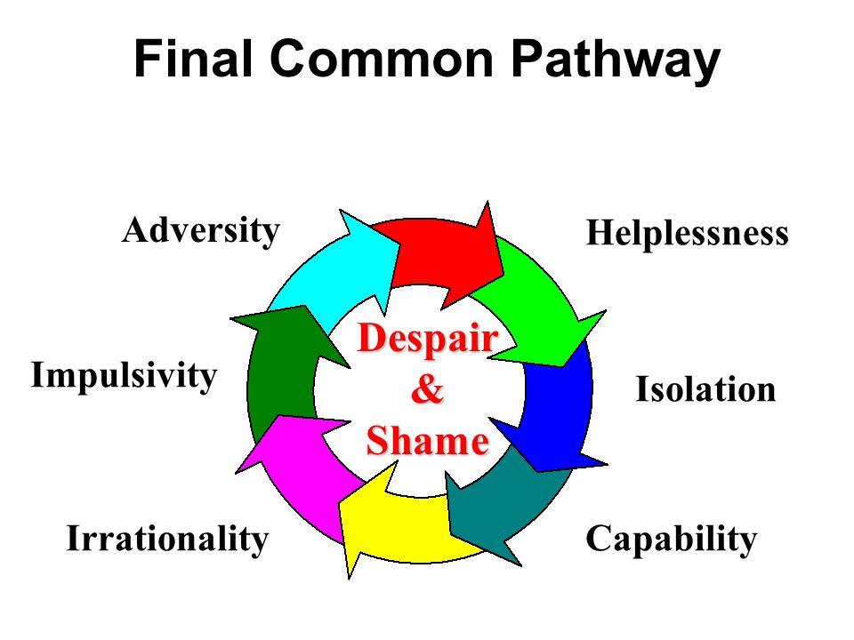 Final Common Pathway Despair & Shame Adversity Impulsivity Irrationality Helplessness Isolation Capability