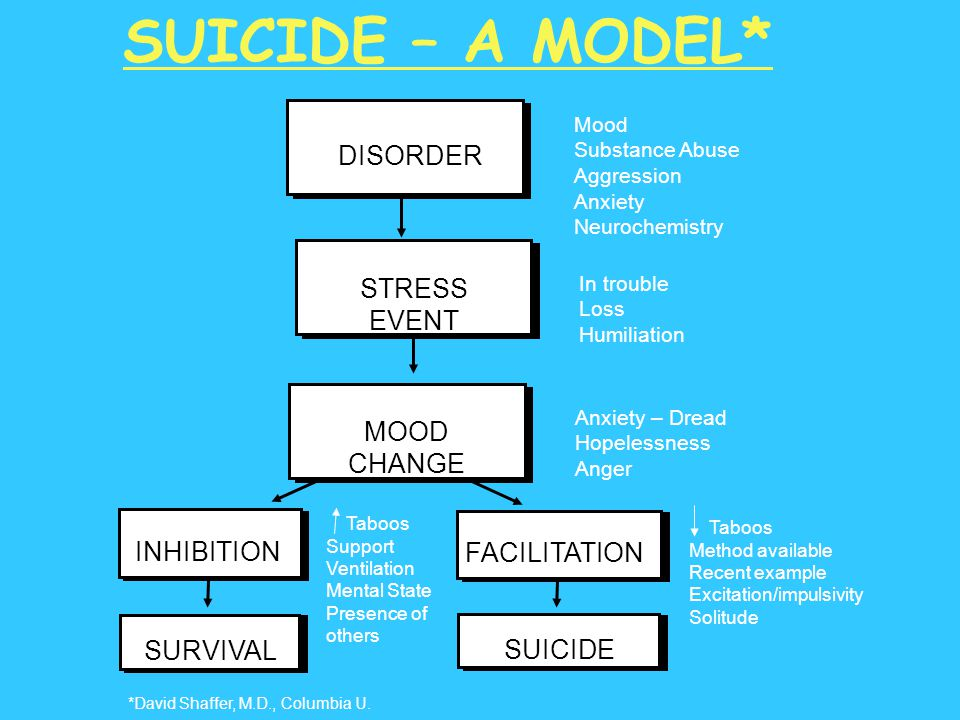 SUICIDE – A MODEL* DISORDER Mood Substance Abuse Aggression Anxiety Neurochemistry In trouble Loss Humiliation Anxiety – Dread Hopelessness Anger STRE
