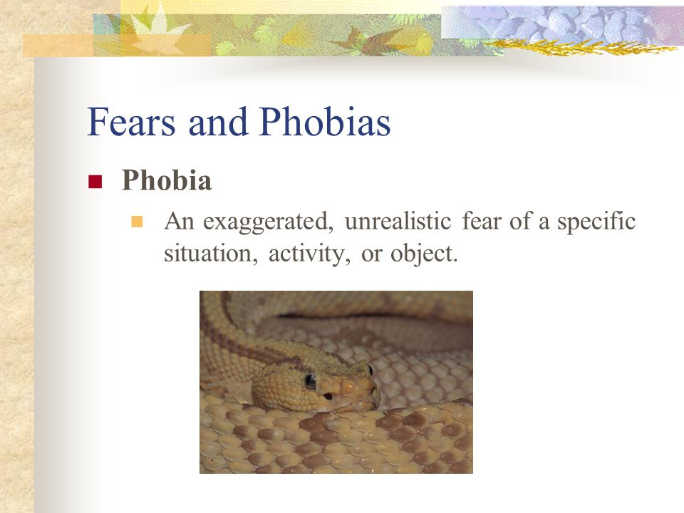 Fears and Phobias Phobia An exaggerated, unrealistic fear of a specific situation, activity, or object.