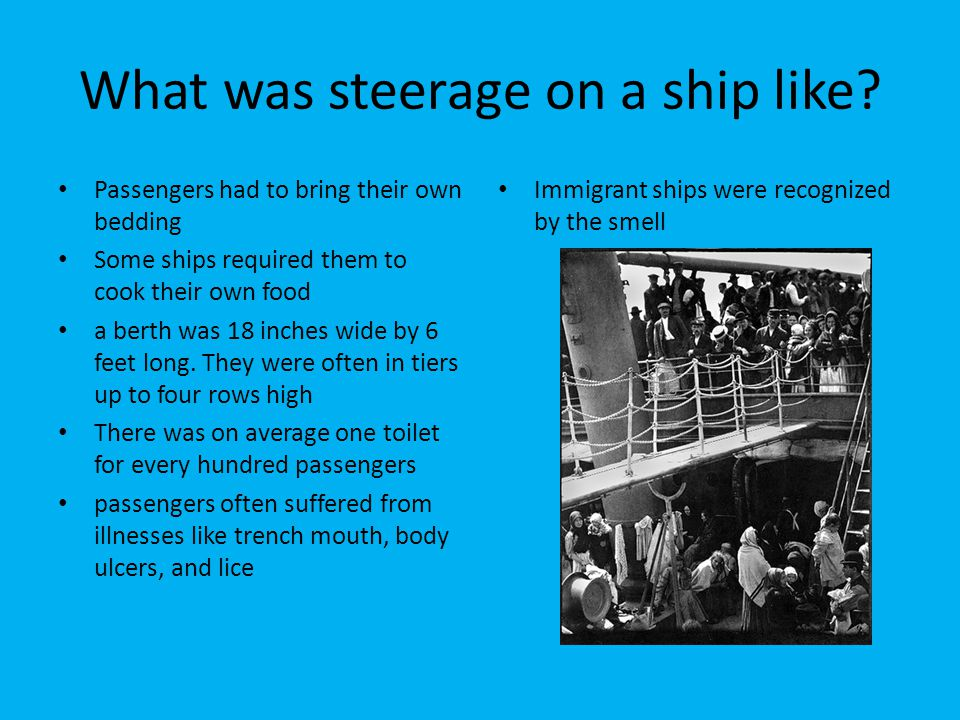 What was steerage on a ship like? Passengers had to bring their own bedding Some ships required them to cook their own food a berth was 18 inches wide