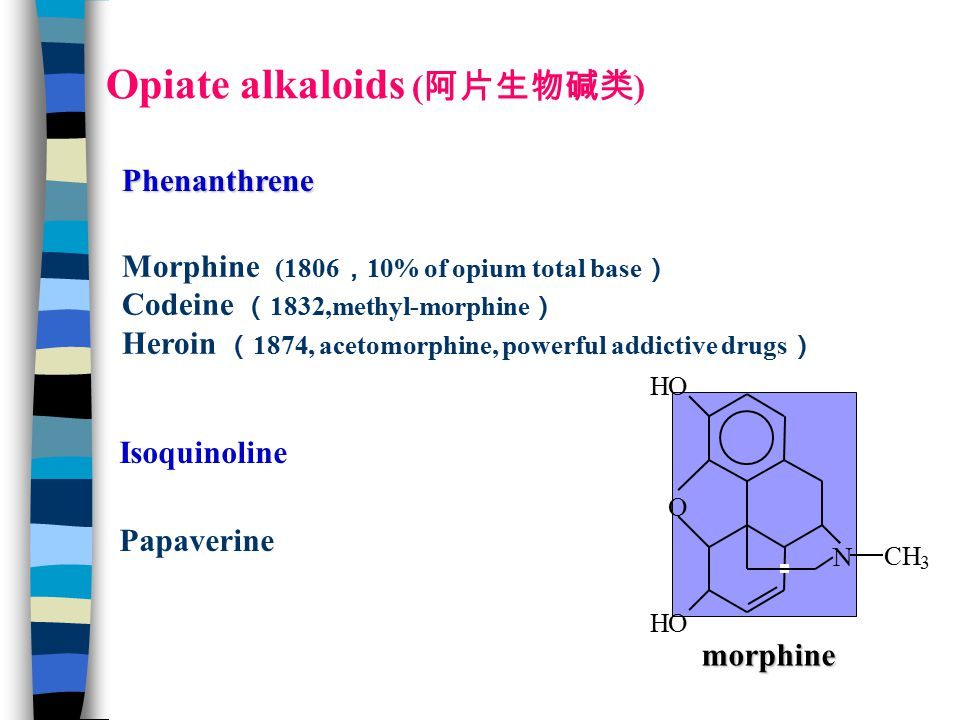 HO HO O N CH 3 morphine Opiate alkaloids ( 阿片生物碱类 ) Morphine (1806 , 10% of opium total base ) Codeine ( 1832,methyl-morphine ) Heroin ( 1874, acetomorphine, powerful addictive drugs ) Phenanthrene Isoquinoline Papaverine