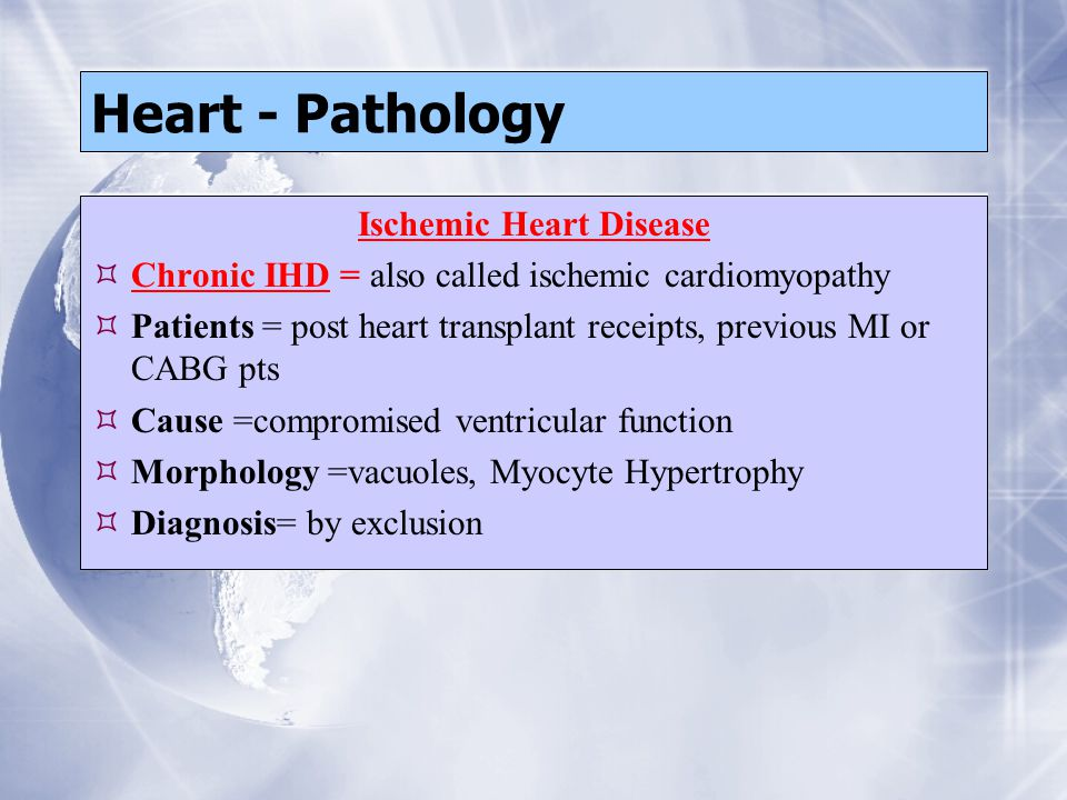 Heart - Pathology Ischemic Heart Disease  Chronic IHD = also called ischemic cardiomyopathy  Patients = post heart transplant receipts, previous MI or CABG pts  Cause =compromised ventricular function  Morphology =vacuoles, Myocyte Hypertrophy  Diagnosis= by exclusion Ischemic Heart Disease  Chronic IHD = also called ischemic cardiomyopathy  Patients = post heart transplant receipts, previous MI or CABG pts  Cause =compromised ventricular function  Morphology =vacuoles, Myocyte Hypertrophy  Diagnosis= by exclusion