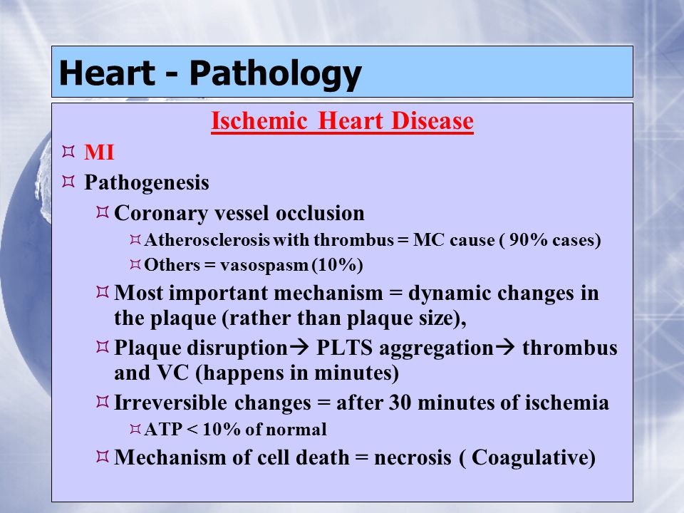 Heart - Pathology Ischemic Heart Disease  MI  Pathogenesis  Coronary vessel occlusion  Atherosclerosis with thrombus = MC cause ( 90% cases)  Others = vasospasm (10%)  Most important mechanism = dynamic changes in the plaque (rather than plaque size),  Plaque disruption  PLTS aggregation  thrombus and VC (happens in minutes)  Irreversible changes = after 30 minutes of ischemia  ATP < 10% of normal  Mechanism of cell death = necrosis ( Coagulative) Ischemic Heart Disease  MI  Pathogenesis  Coronary vessel occlusion  Atherosclerosis with thrombus = MC cause ( 90% cases)  Others = vasospasm (10%)  Most important mechanism = dynamic changes in the plaque (rather than plaque size),  Plaque disruption  PLTS aggregation  thrombus and VC (happens in minutes)  Irreversible changes = after 30 minutes of ischemia  ATP < 10% of normal  Mechanism of cell death = necrosis ( Coagulative)