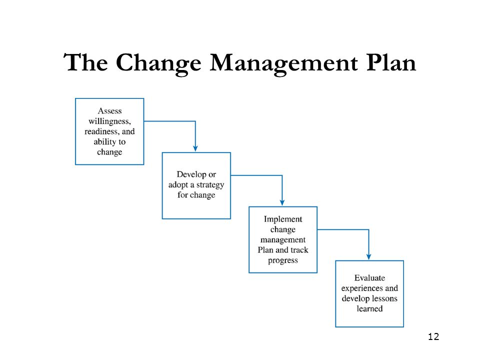 12 The Change Management Plan