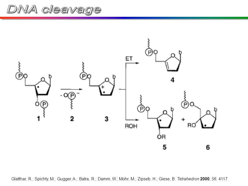 Glatthar, R.; Spichty, M.; Gugger, A.; Batra, R.; Damm, W.; Mohr, M.; Zipseb, H.; Giese, B.