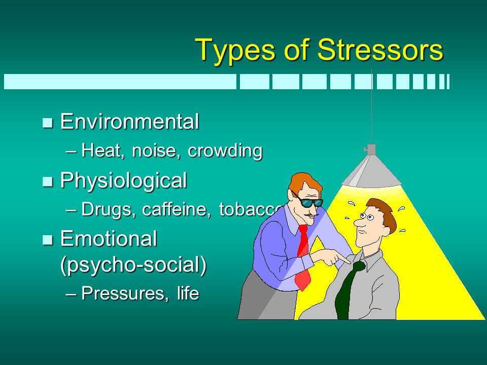 Types of Stressors n Environmental –Heat, noise, crowding n Physiological –Drugs, caffeine, tobacco n Emotional (psycho-social) –Pressures, life