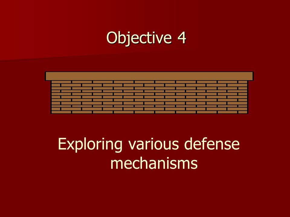 Objective 4 Exploring various defense mechanisms