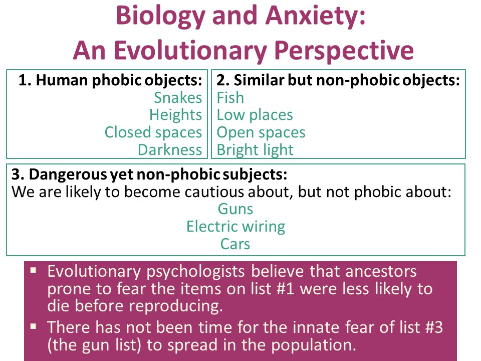 Biology and Anxiety: An Evolutionary Perspective 3. Dangerous yet non-phobic subjects: We are likely to become cautious about, but not phobic about: G