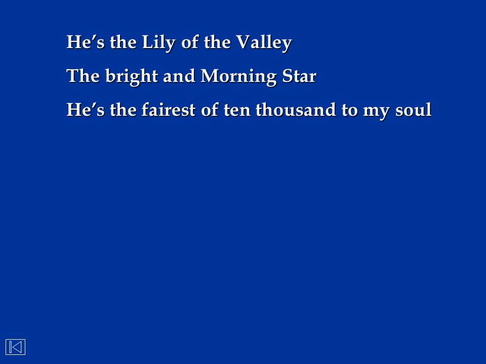 He's the Lily of the Valley The bright and Morning Star He's the fairest of ten thousand to my soul