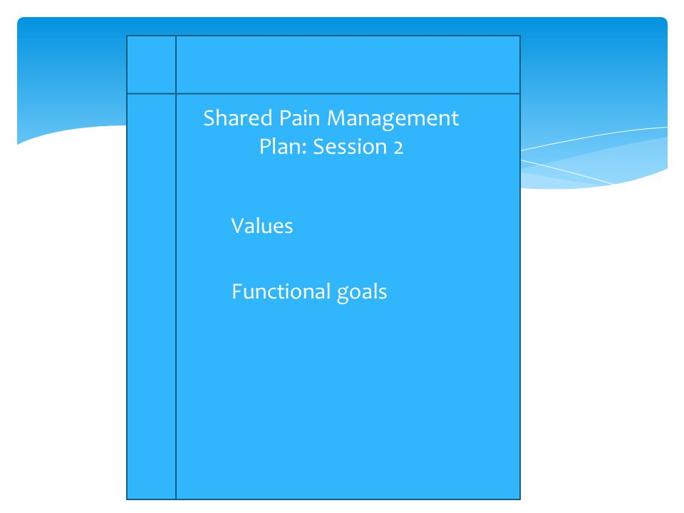 1.Values 2.Functional goals Shared Pain Management Plan: Session 2