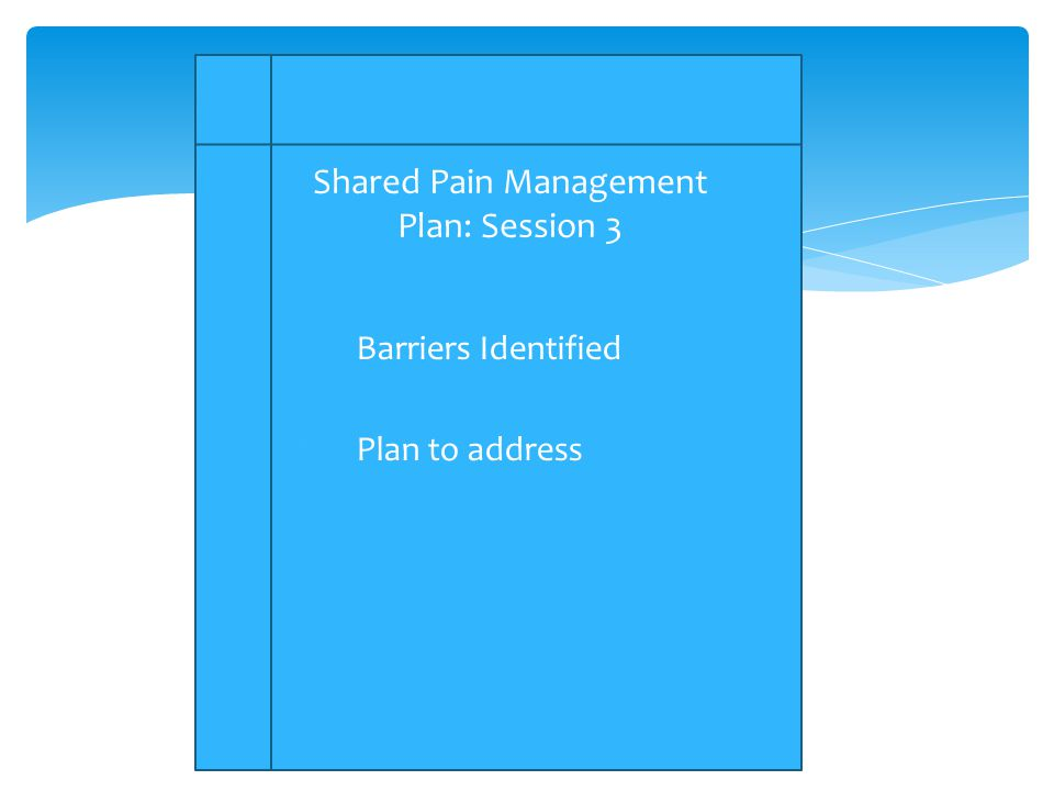 1.Barriers Identified 2.Plan to address Shared Pain Management Plan: Session 3