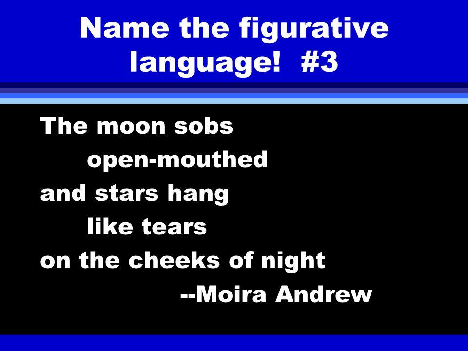 Name the figurative language.