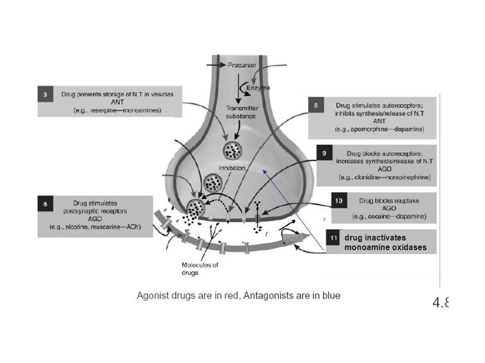 drug inactivates monoamine oxidases