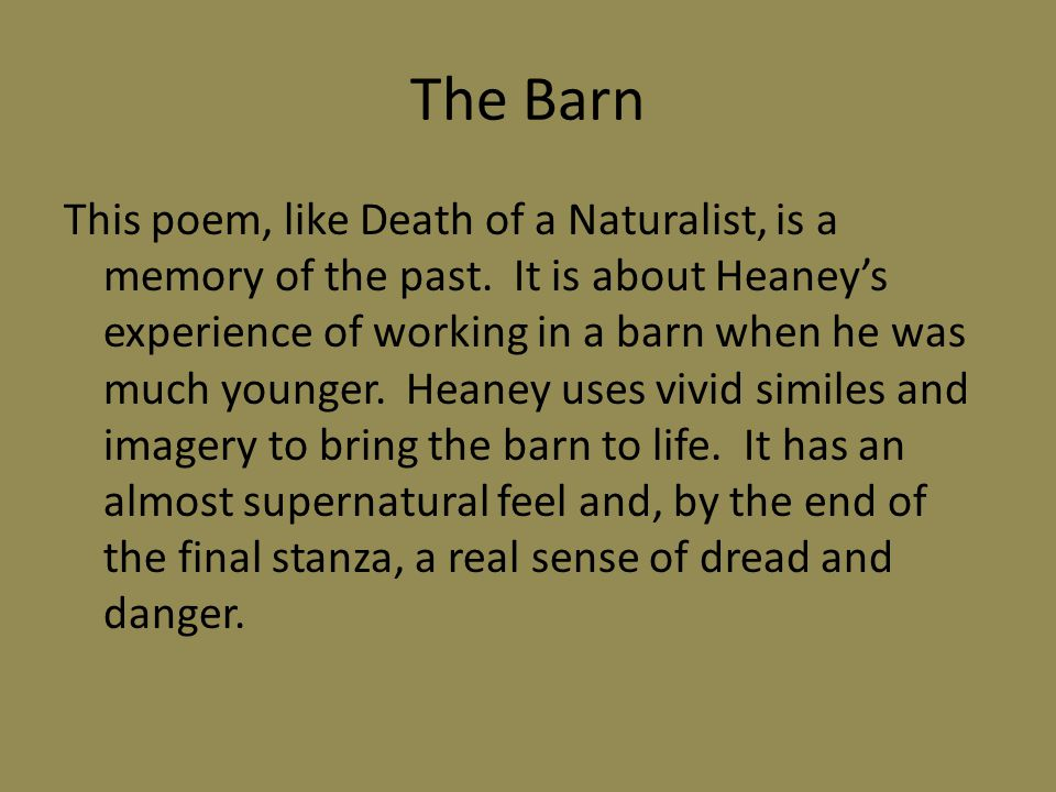The Barn This poem, like Death of a Naturalist, is a memory of the past. It is about Heaney's experience of working in a barn when he was much younger