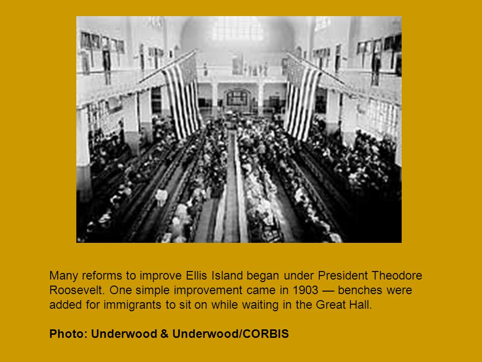 Many reforms to improve Ellis Island began under President Theodore Roosevelt.