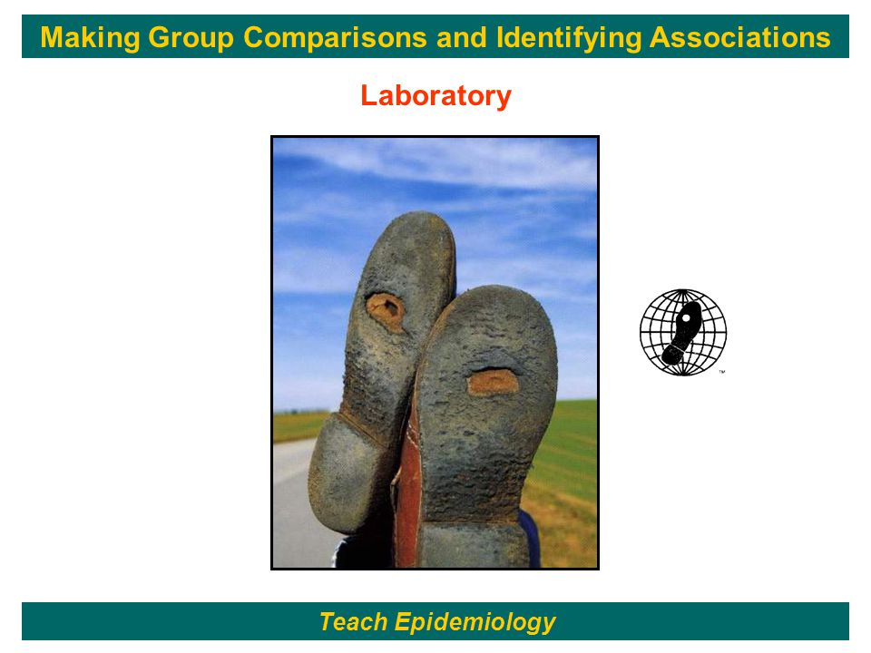 Laboratory Teach Epidemiology Making Group Comparisons and Identifying Associations