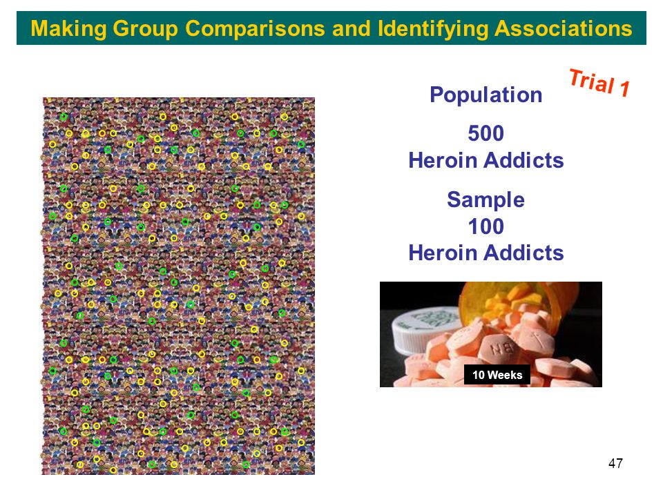 47 Population 500 Heroin Addicts Sample 100 Heroin Addicts 10 Weeks Trial 1 Making Group Comparisons and Identifying Associations