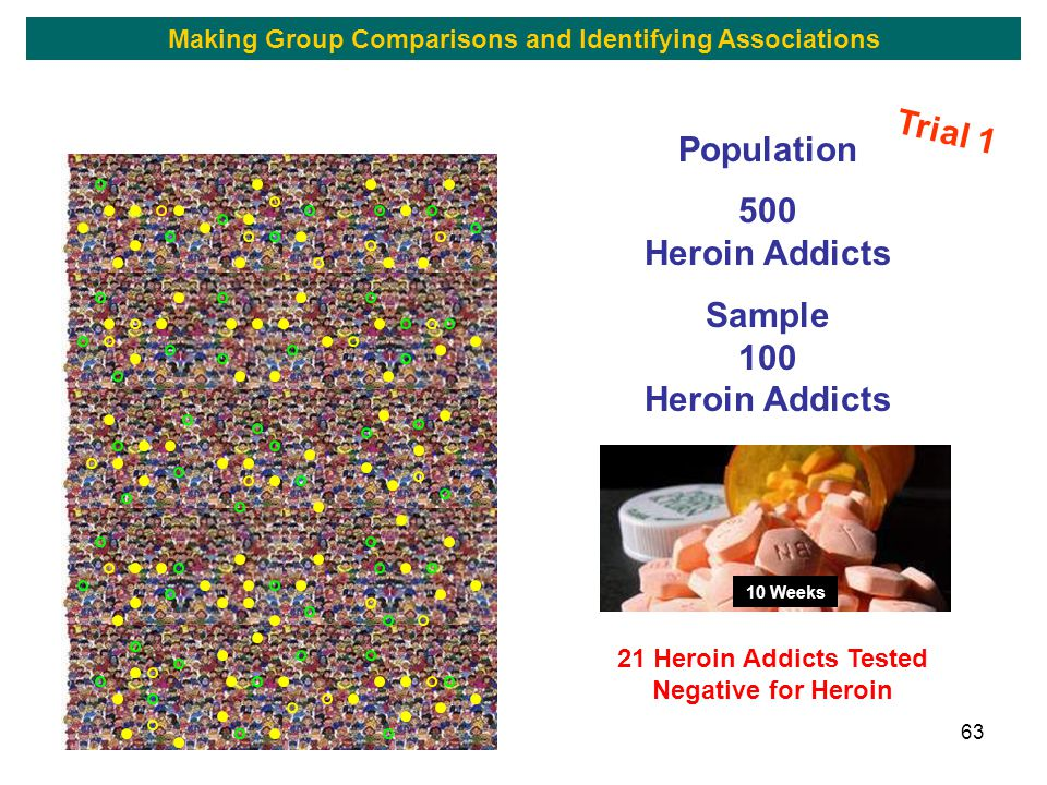 63 Population 500 Heroin Addicts Sample 100 Heroin Addicts 10 Weeks 21 Heroin Addicts Tested Negative for Heroin Trial 1 Making Group Comparisons and Identifying Associations