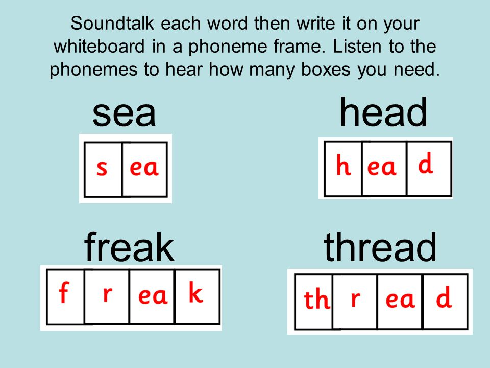 Soundtalk each word then write it on your whiteboard in a phoneme frame.