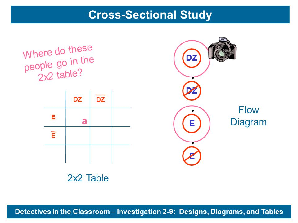DZ E E a Flow Diagram 2x2 Table Where do these people go in the 2x2 table.