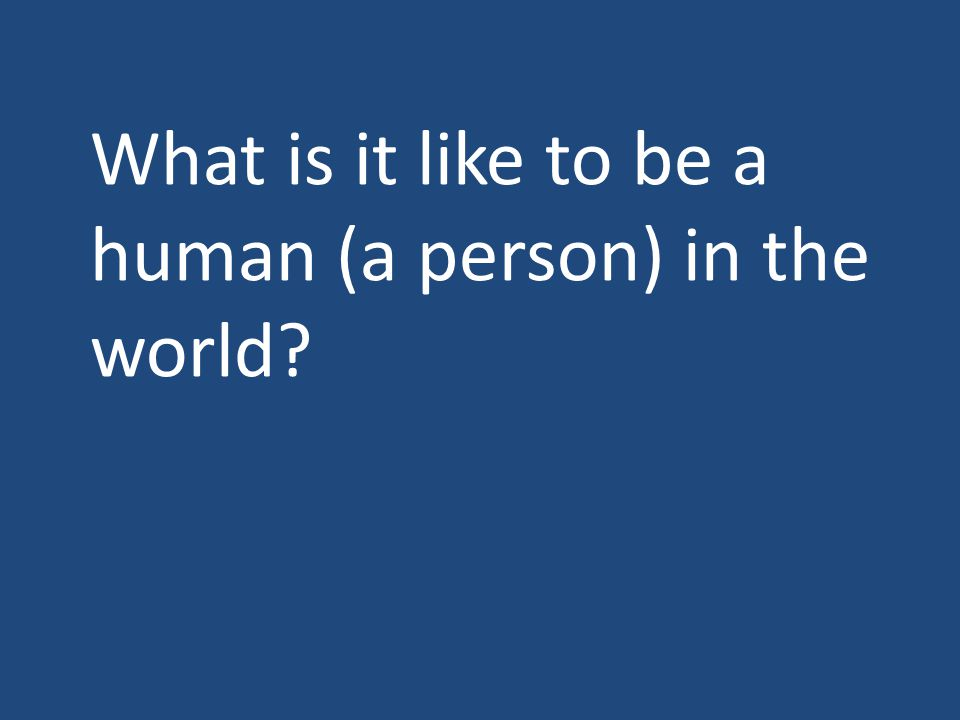 What is it like to be a human (a person) in the world