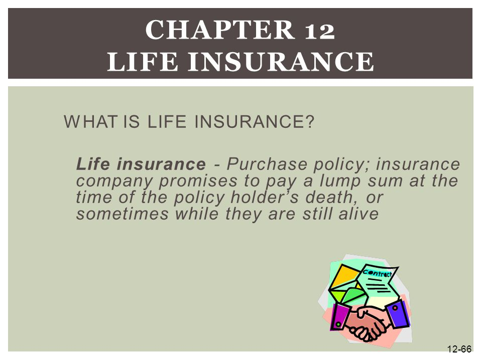 WHAT IS LIFE INSURANCE? Life insurance - Purchase policy; insurance company promises to pay a lump sum at the time of the policy holder's death, or so
