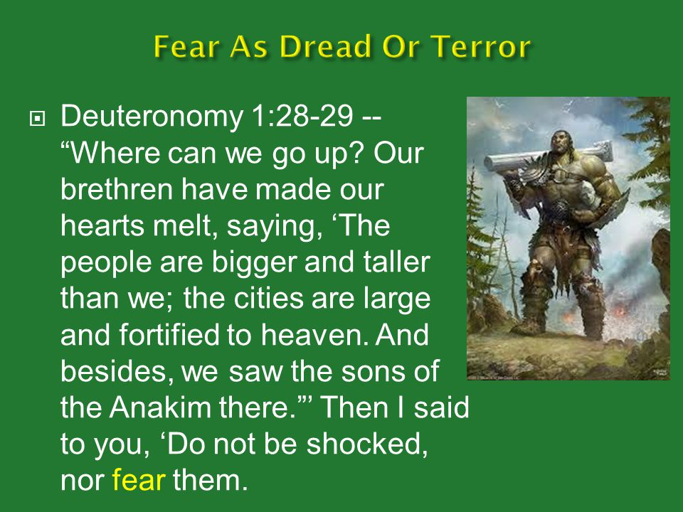  Deuteronomy 1:28-29 -- Where can we go up.