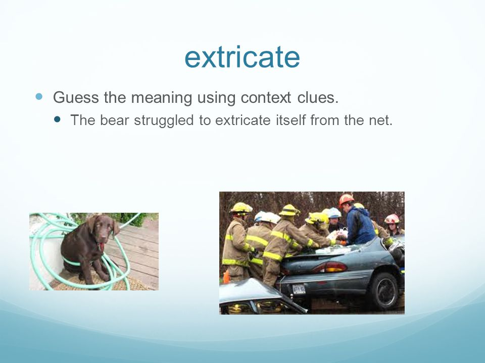 extricate Guess the meaning using context clues. The bear struggled to extricate itself from the net.
