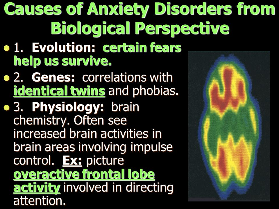 Causes of Anxiety Disorders from Biological Perspective 1. Evolution: certain fears help us survive. 1. Evolution: certain fears help us survive. 2. G