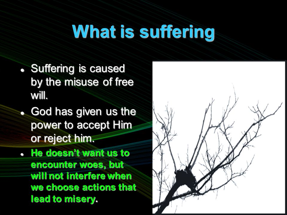 What is suffering Suffering is caused by the misuse of free will.