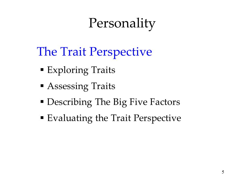 5 Personality The Trait Perspective  Exploring Traits  Assessing Traits  Describing The Big Five Factors  Evaluating the Trait Perspective