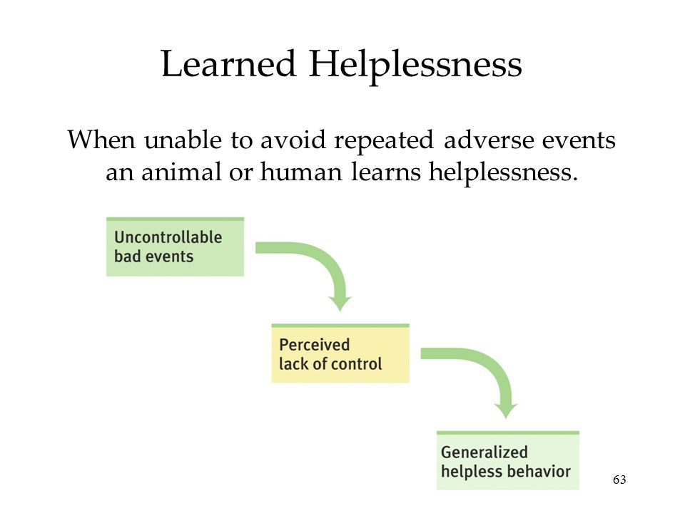 63 Learned Helplessness When unable to avoid repeated adverse events an animal or human learns helplessness.