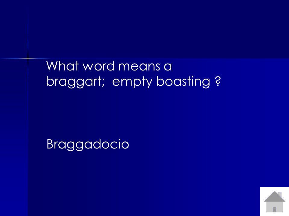 What word means a braggart; empty boasting Braggadocio
