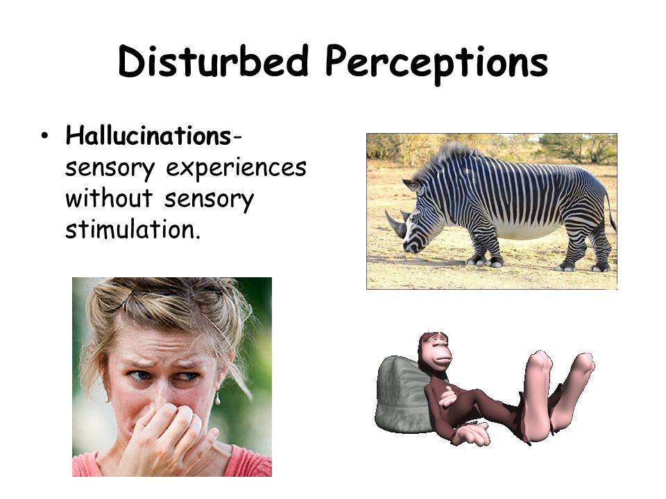 Disturbed Perceptions Hallucinations- sensory experiences without sensory stimulation.