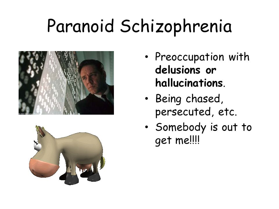 Paranoid Schizophrenia Preoccupation with delusions or hallucinations. Being chased, persecuted, etc. Somebody is out to get me!!!!
