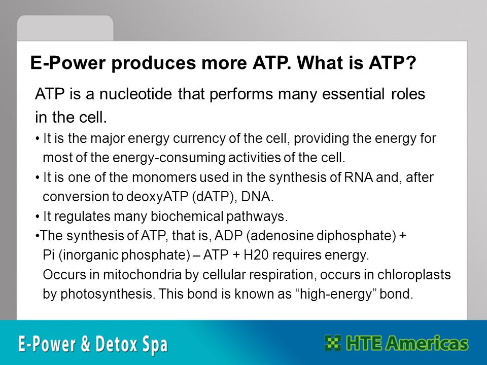 ATP is a nucleotide that performs many essential roles in the cell.