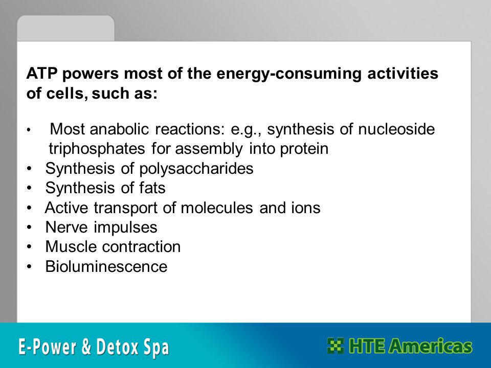 ATP powers most of the energy-consuming activities of cells, such as: Most anabolic reactions: e.g., synthesis of nucleoside triphosphates for assembly into protein Synthesis of polysaccharides Synthesis of fats Active transport of molecules and ions Nerve impulses Muscle contraction Bioluminescence