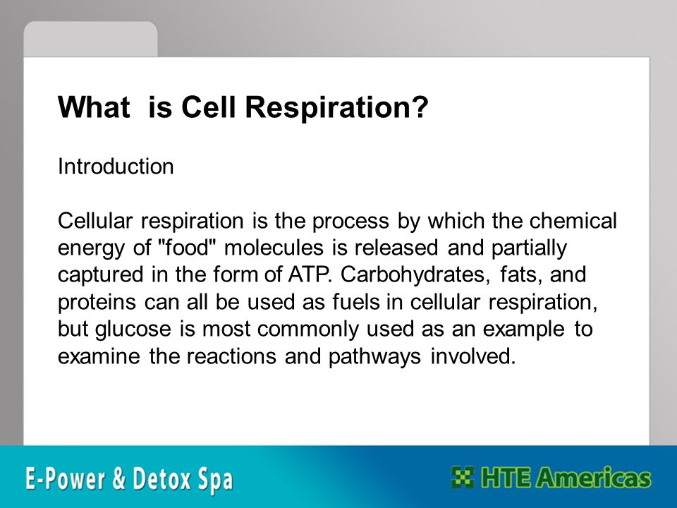 What is Cell Respiration.