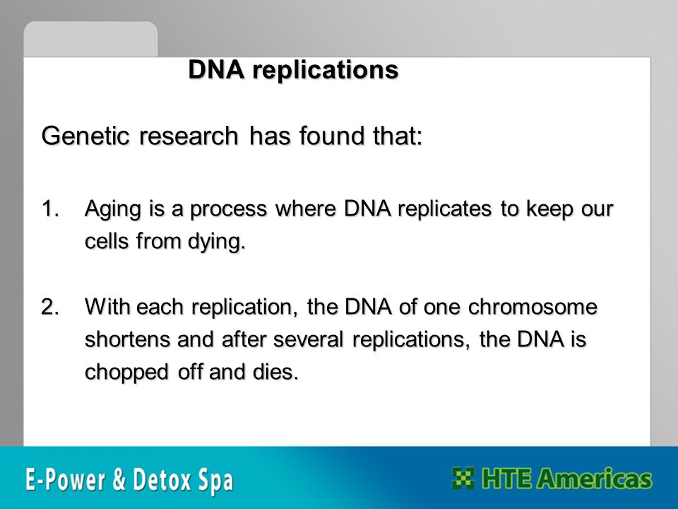 DNA replications Genetic research has found that: 1.