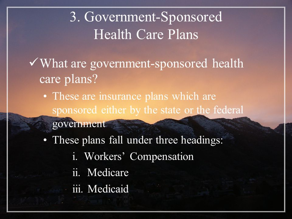 3. Government-Sponsored Health Care Plans What are government-sponsored health care plans.