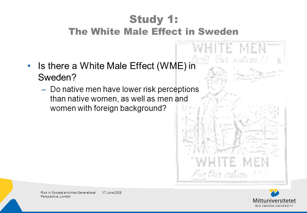 17 June 2008Risk in Societal and Inter-Generational Perspective, London Study 1: The White Male Effect in Sweden Is there a White Male Effect (WME) in Sweden.